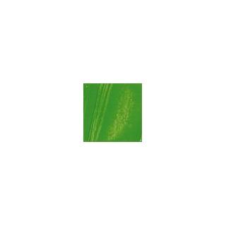 HUILE FINE XL T37ML VERT CAD.I