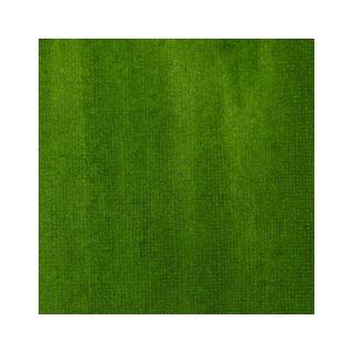 ENCRE LIQUITEX SAP GREEN